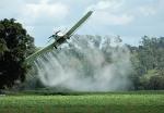pesticides 004