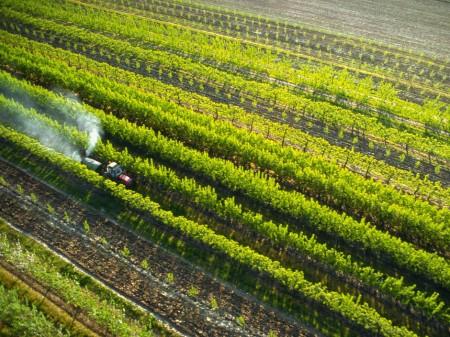 pesticides 010